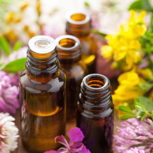 Essential-Oils-PLR-Info-Videos-Featured-Image